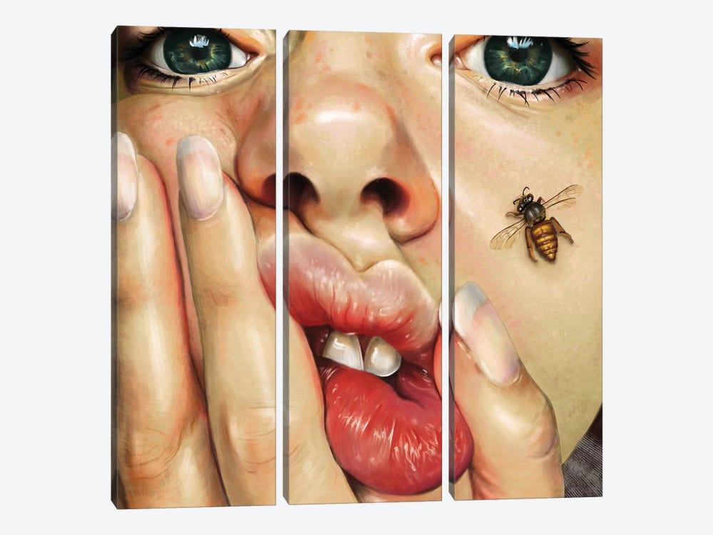 Honeysuckle by Teodora Jelenic 3-piece Canvas Print