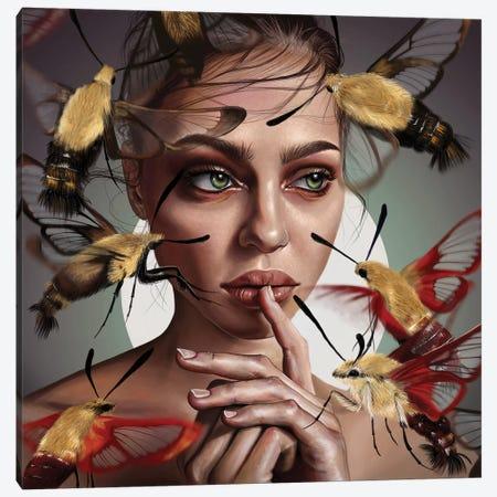 Moths Flight Canvas Print #TJE29} by Teodora Jelenic Canvas Art