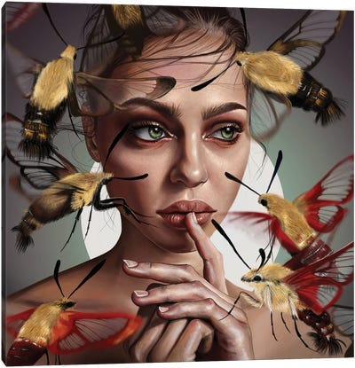 Moths Flight Canvas Art Print