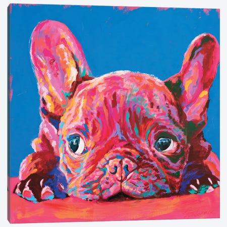 French Bulldog Canvas Print #TKA10} by Tadaomi Kawasaki Canvas Art