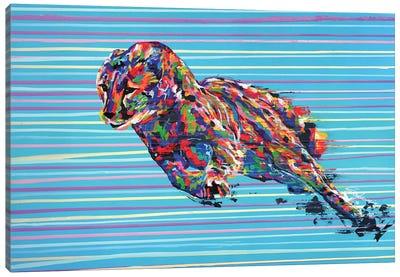 Cheetah - Speed Series - Canvas Art Print