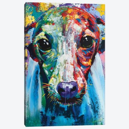 Italian Greyhound I Canvas Print #TKA14} by Tadaomi Kawasaki Canvas Art Print
