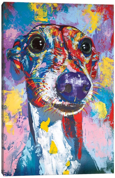 Italian Greyhound III Canvas Art Print