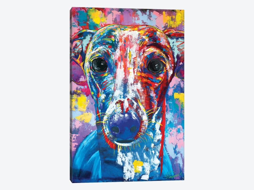 Italian Greyhound V by Tadaomi Kawasaki 1-piece Canvas Wall Art