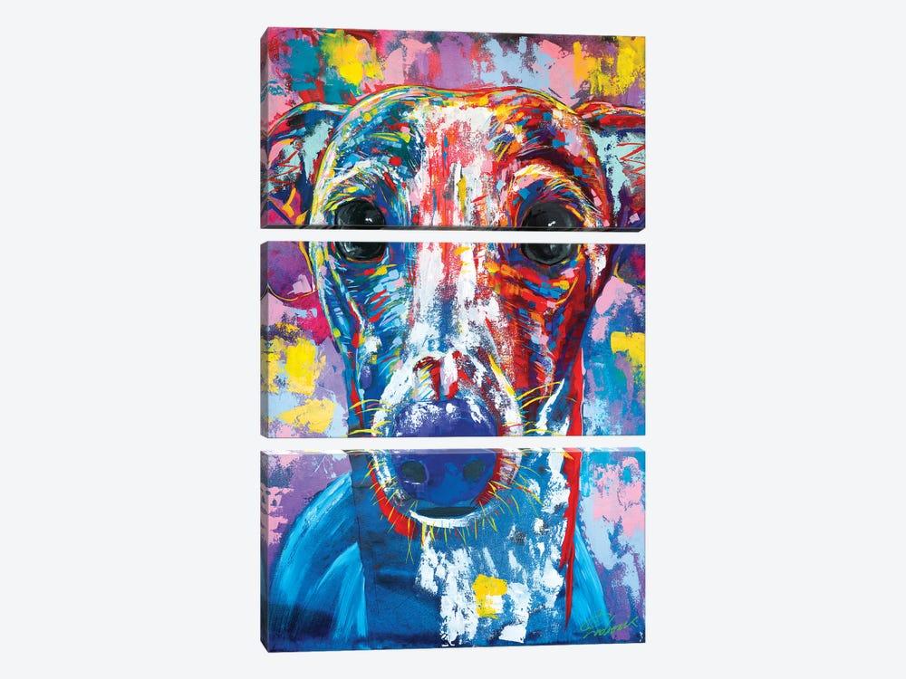 Italian Greyhound V by Tadaomi Kawasaki 3-piece Canvas Art
