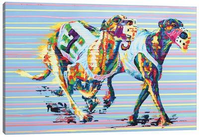 Whippet - Speed Series Canvas Art Print
