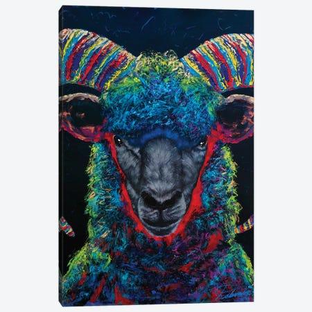 Black Sheep Canvas Print #TKA4} by Tadaomi Kawasaki Canvas Art