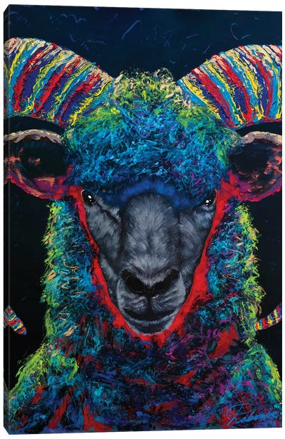 Black Sheep Canvas Art Print