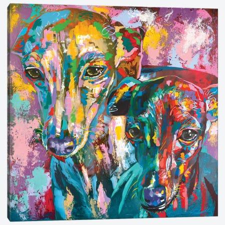 Italian Greyhound 07 Canvas Print #TKA50} by Tadaomi Kawasaki Canvas Artwork