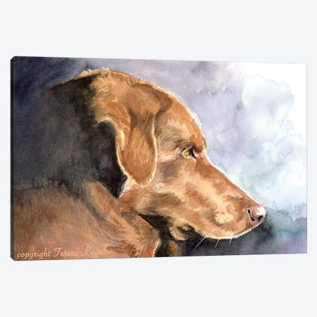 My Daisy Canvas Print #TKG138} by Teresa Kogut Canvas Artwork