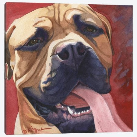 Oscar Canvas Print #TKG142} by Teresa Kogut Canvas Art Print
