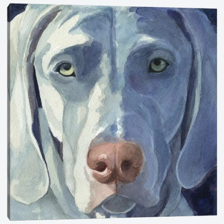 Sadie Canvas Print #TKG161} by Teresa Kogut Canvas Art Print