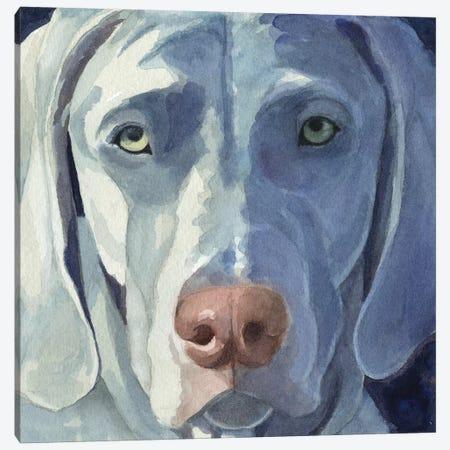 Sadie Canvas Print #TKG161} by Teresa Kogut Canvas Art Print