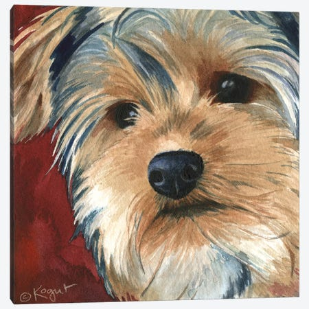 Sasha The Yorkie Canvas Print #TKG163} by Teresa Kogut Canvas Print