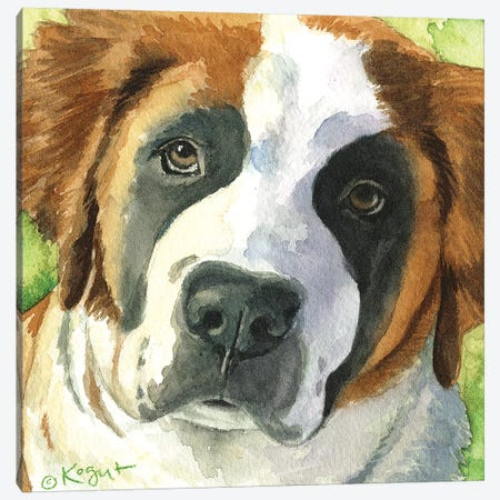 Bailey The Bernard Canvas Print #TKG18} by Teresa Kogut Canvas Art