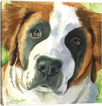 Bailey The Bernard Canvas Art Print