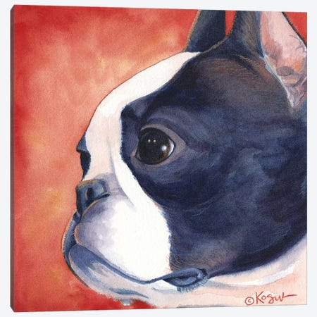 Bandit Boston Terrier Canvas Print #TKG19} by Teresa Kogut Canvas Wall Art