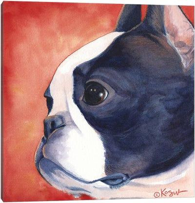 Bandit Boston Terrier Canvas Art Print
