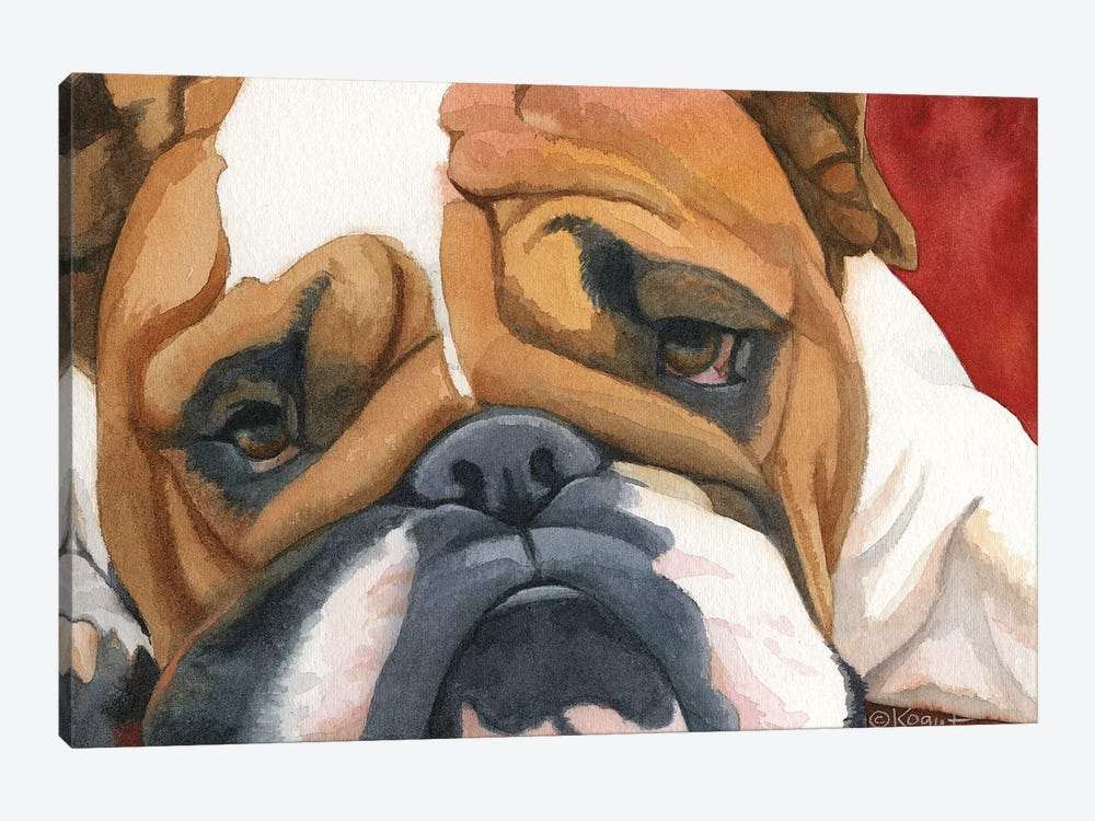 Bruiser The Bulldog by Teresa Kogut 1-piece Art Print