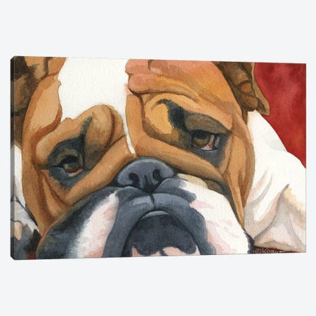 Bruiser The Bulldog Canvas Print #TKG27} by Teresa Kogut Canvas Wall Art