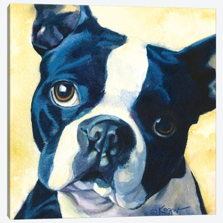 Chumly Boston Terrier Canvas Print #TKG38} by Teresa Kogut Canvas Wall Art