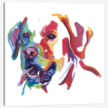 Labrador Canvas Print #TLB11} by Andrew Talbot Canvas Artwork