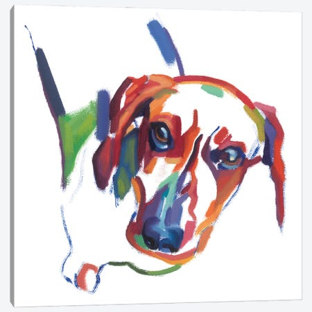 Dachshund Canvas Print #TLB7} by Andrew Talbot Canvas Art