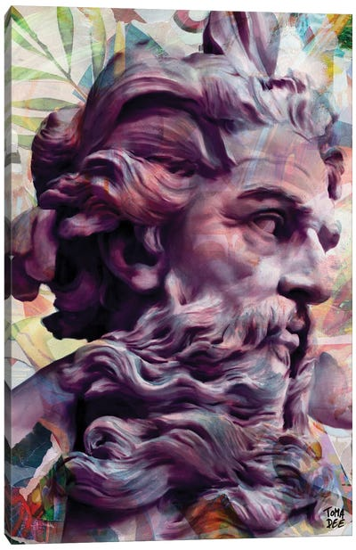 Zeus Canvas Art Print