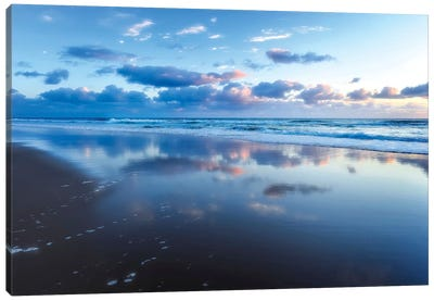 Blue Shores Canvas Art Print