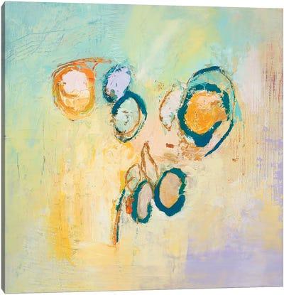 Sky Circles Canvas Art Print