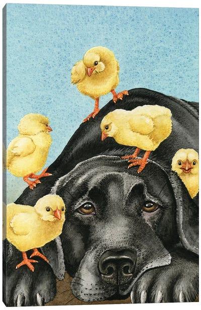 Chick Magnet Canvas Art Print