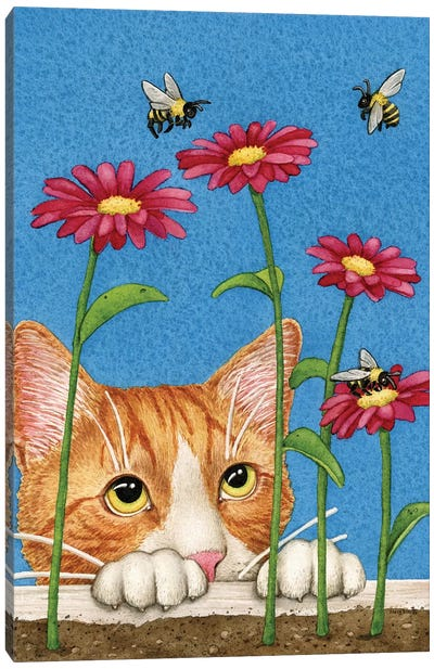 Curious Cat Canvas Art Print