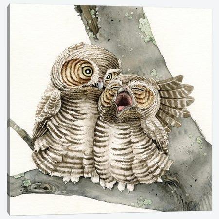 Good Night Owl Canvas Print #TLZ40} by Tracy Lizotte Art Print