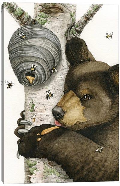 Honey Bear Canvas Art Print