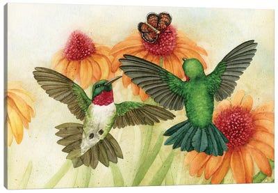 Humingbird Garden II Canvas Art Print