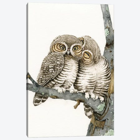 Owl Smooch Canvas Print #TLZ58} by Tracy Lizotte Canvas Art