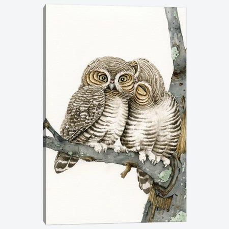 Owl Smooch Canvas Print #TLZ58} by Tracy Lizotte Canvas Art