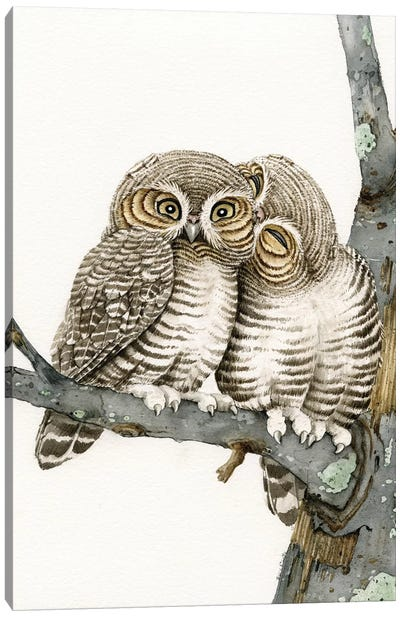 Owl Smooch Canvas Art Print