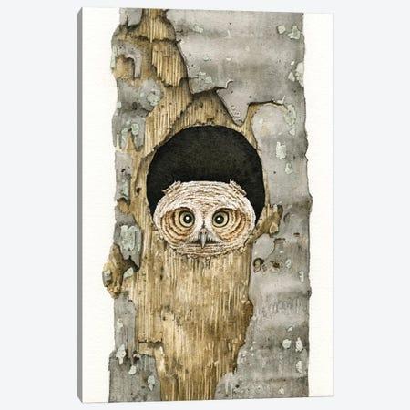Peek A Boo Owl Canvas Print #TLZ61} by Tracy Lizotte Canvas Art Print