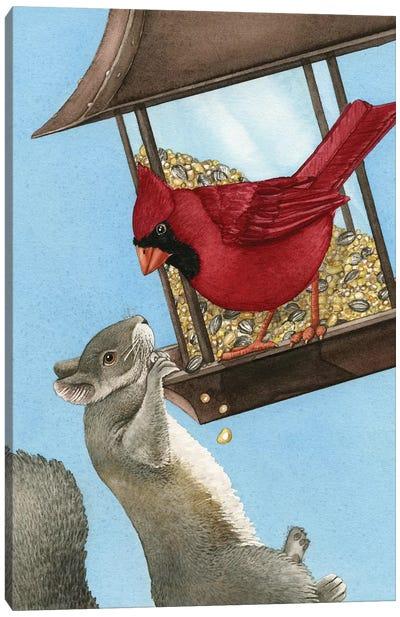 Squirrel Dilemma Canvas Art Print
