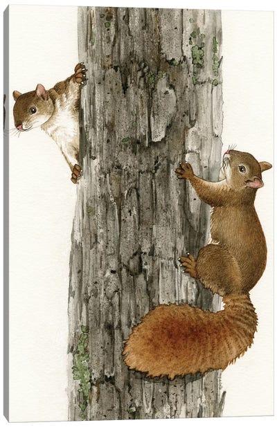 Squirrel Tag Canvas Art Print