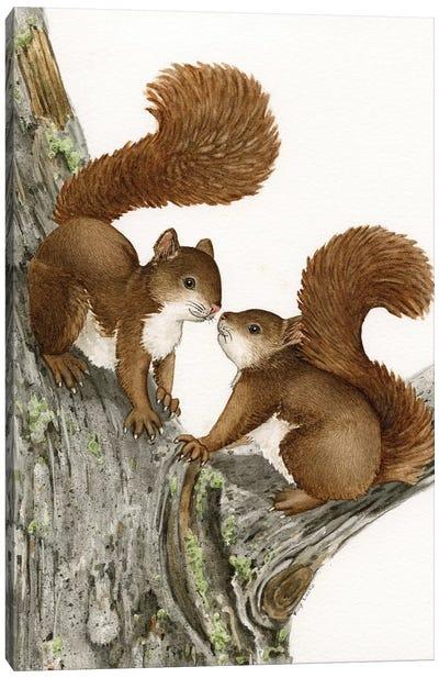 Two Squirrels Canvas Art Print