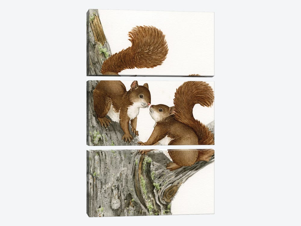 Two Squirrels by Tracy Lizotte 3-piece Art Print