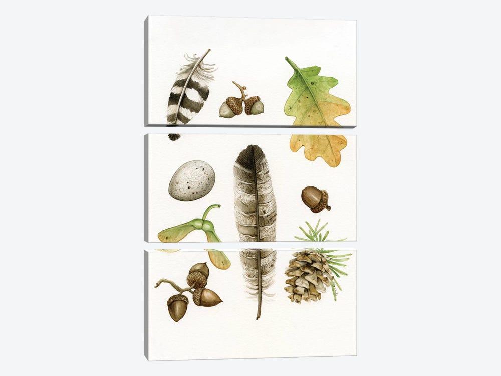 Woodland Study II by Tracy Lizotte 3-piece Art Print
