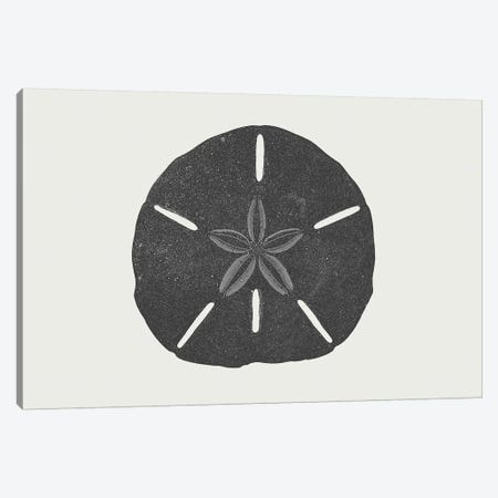 Sand Dollar Canvas Print #TMD43} by The Maisey Design Shop Canvas Wall Art