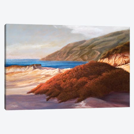 Coastal Dunes Canvas Print #TMI11} by Tom Mielko Canvas Wall Art