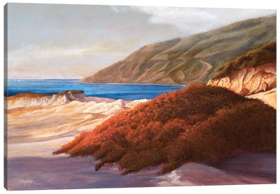 Coastal Dunes Canvas Art Print