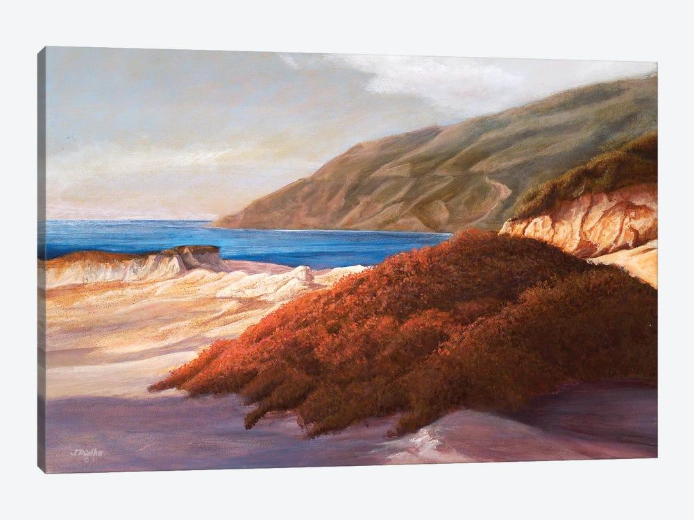 Coastal Dunes by Tom Mielko 1-piece Canvas Print