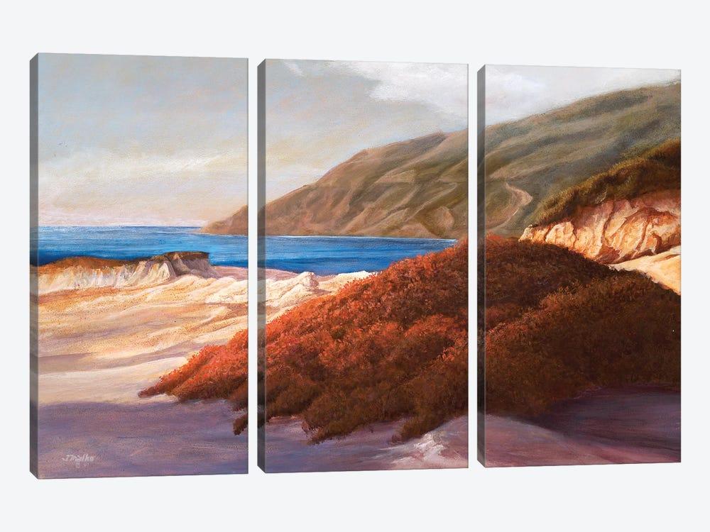 Coastal Dunes by Tom Mielko 3-piece Canvas Print