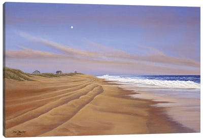 Moonlite Seranade by Tom Mielko Canvas Art Print